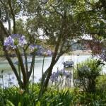 Jardin_Villa_Pen_Prad_Sauzon_location_Belle-Ile_vue4